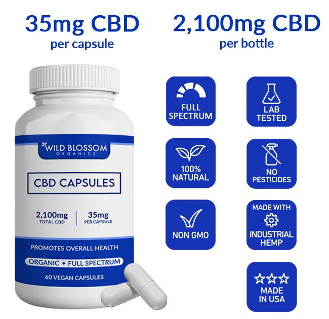 CBD Capsules icons - full spectrum, lab tested, no pesticides, made in the USA, Non-GMO