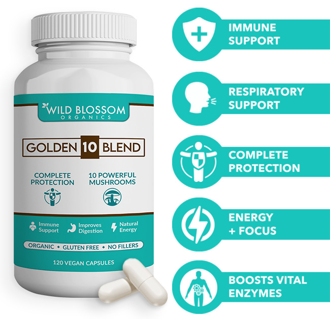 Wild Blossom Organic 10 powerful food mushrooms. Immune support, respiratory support, complete protection, energy and focus, boosts vital enzymes