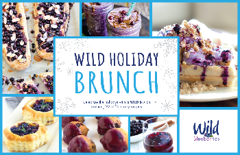 Wild Blue Holiday Brunch Book Cover