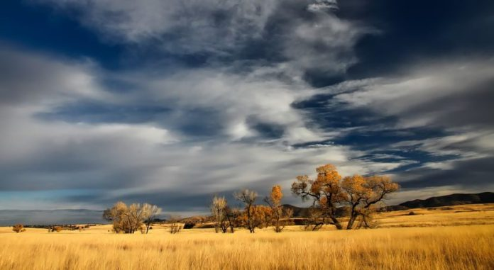 Rewilding Patagonia