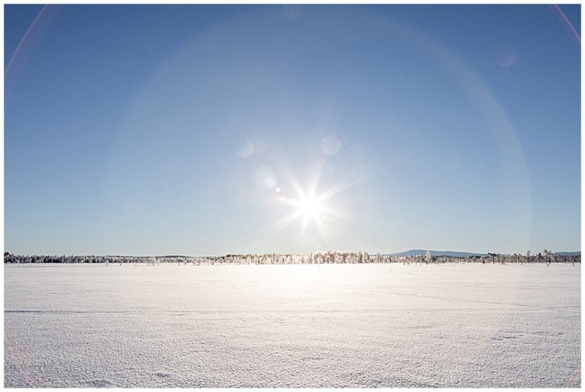 A frozen wilderness in Levi Finland by Wild Connections Photography