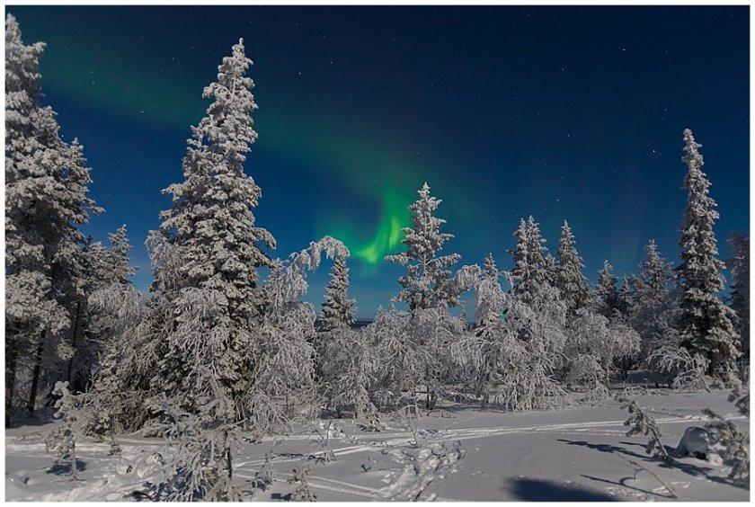 Aurora Borealis swirl in the sky in Levi Finland by Wild Connections Photography