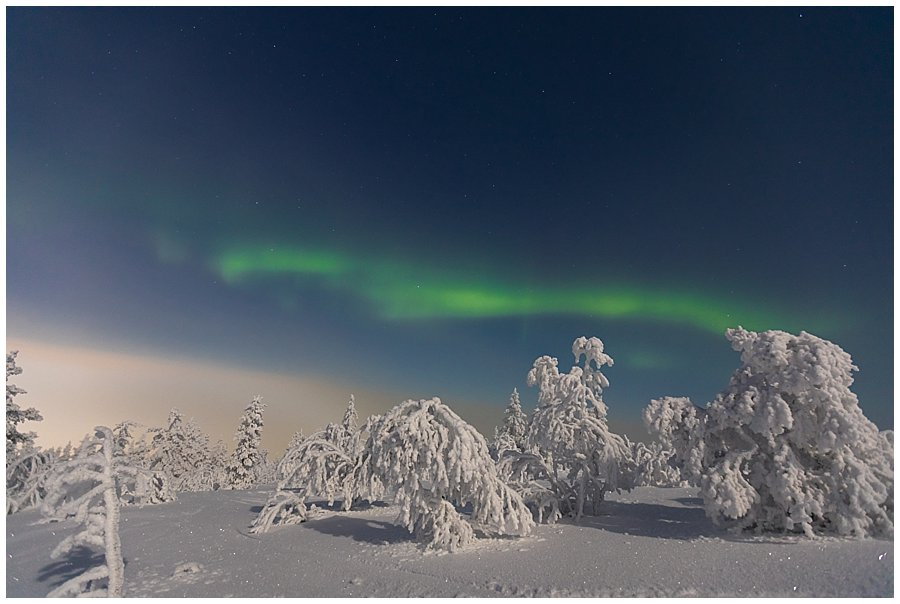 The aurora borealis dance across the sky in Levi Finland by Wild Connections Photography