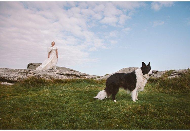Cornwall After Wedding Pet Shoot