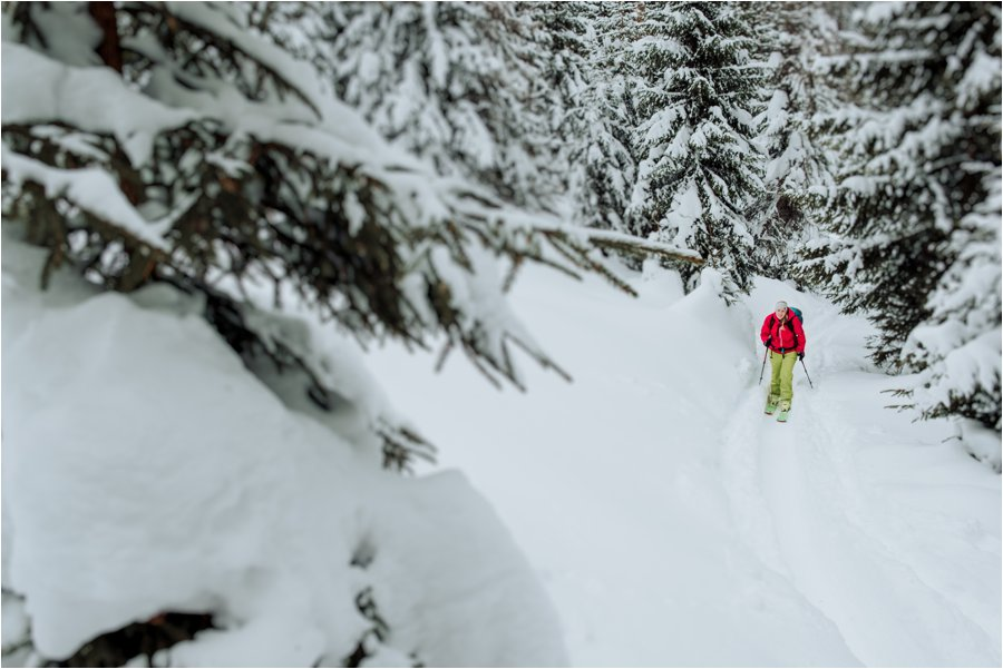 A female skier ski touring through the trees in deep snow by Wild Connections Photography