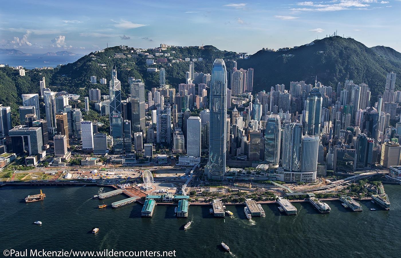 Hong Kong Wildencounters