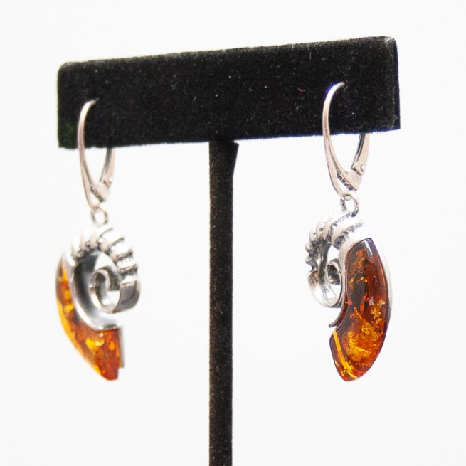 Amber Ammonite Earrings