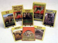 Stephen D. Farmer Power Animal Oracle Cards