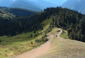 4. The Pacific Northwest Trail