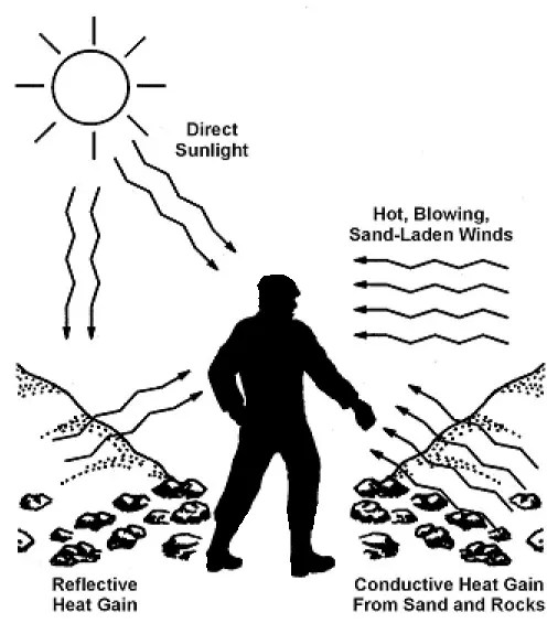 Sources of Heat and Sunlight