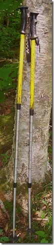 Carbon fiber walking sticks