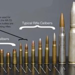 Various handgun and rifle bullet calibers