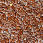 Flax plant seeds