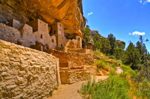 Mesa Verde Trips