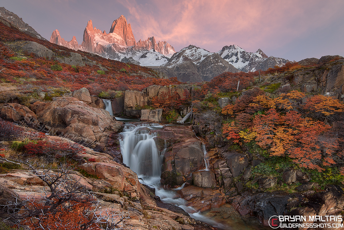 Bing Free Fall Wallpaper Colorado Fall Colors Photos Pictures Of The Rocky