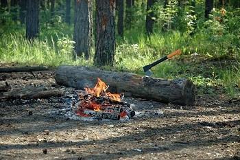 Survival Hatchet Buried in Wood
