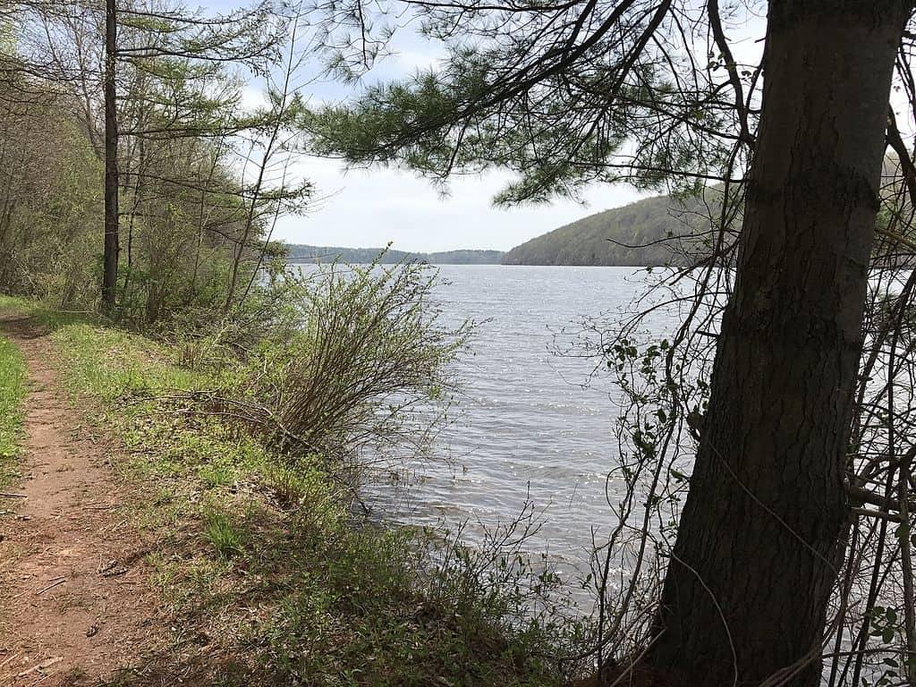 Saltonstall Lake