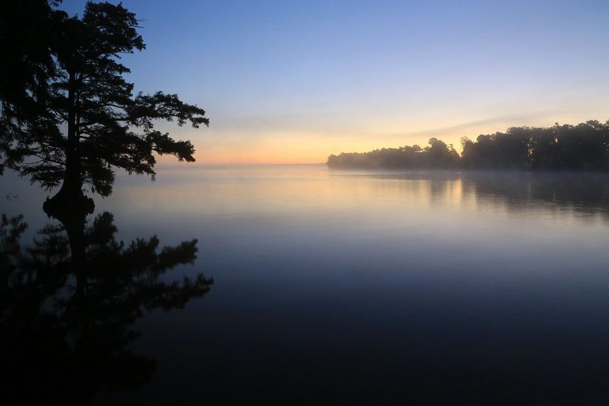 Reelfoot Lake Tennessee Dusk