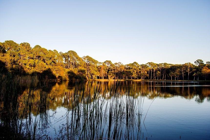 Lake Seminole Georgia