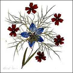 flowerart wildflower artwork christl