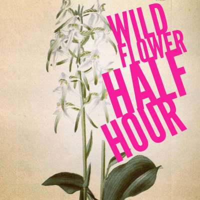 Wild Flower (Half) Hour podcast