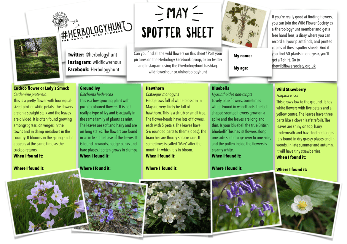 Herbology May Spotter Sheet