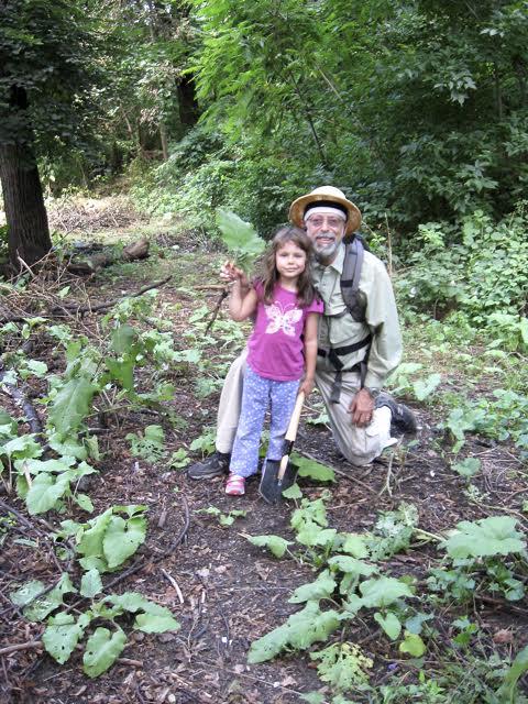 Steve and Violet Brills harvesting burdock root.