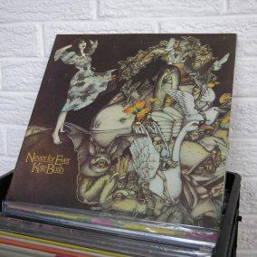 17-o-BE2019-wild-honey-records