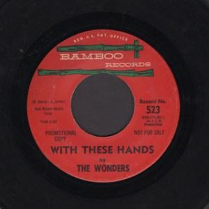 THE WONDERS 45