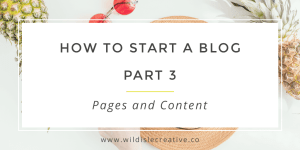 How to Start a Blog 3 Twitter