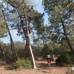 Camino al Mirador del Garbí