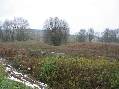 Biotopverbund bei Schiltberg © Wildland-Stiftung Bayern