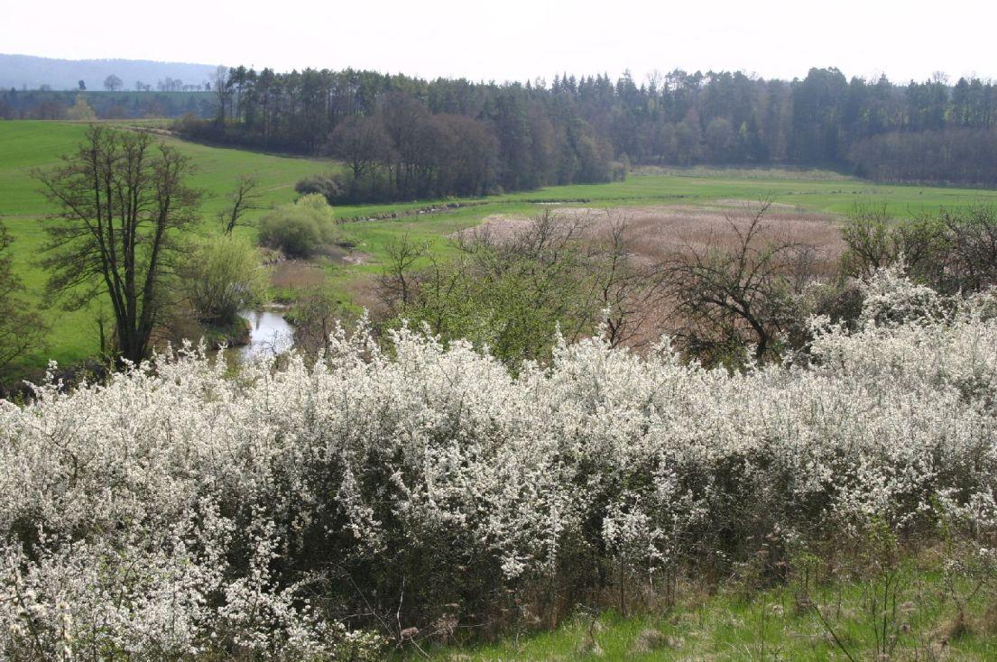 Vielfältiges Landschaftsbild an der Baunach©Wildland-Stiftung Bayern
