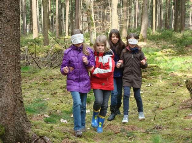 Naturführung zum Lebensraum Wald