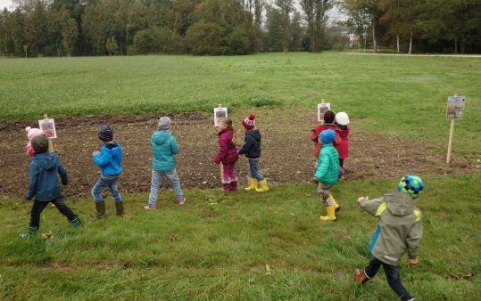 Die Schülerinnen und Schüler versuchen die Samen den richtigen Arten zuzuordnen.