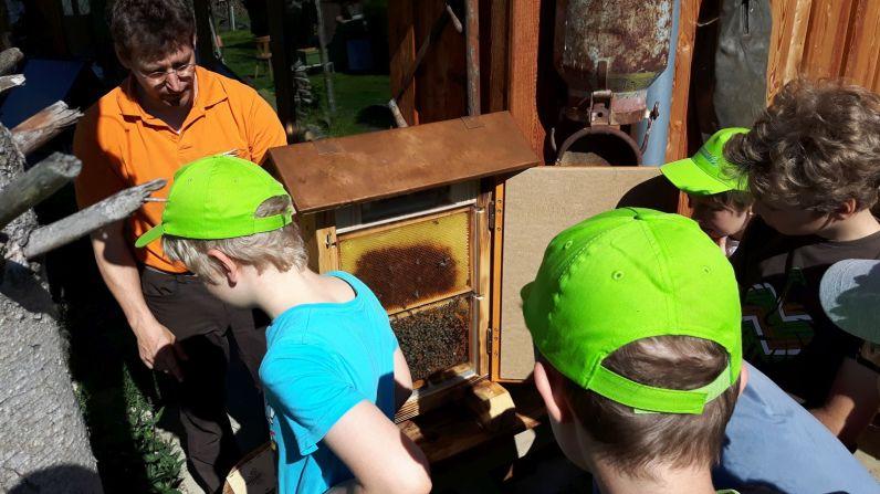 Der Schaubienenkasten beeindruckte nicht nur die Schüler.