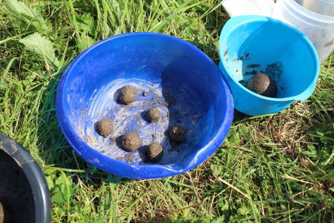 Kleine und große Samenkugerl