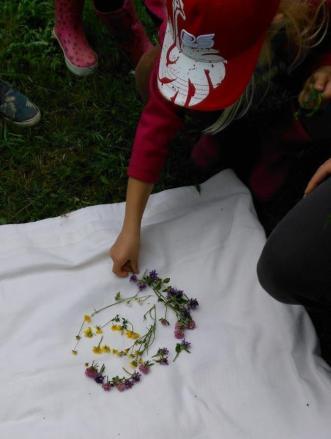 Aus verschiedenen Wiesenpflanzen entsteht ein Gemeinschaftsbild.