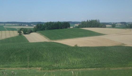 Agrarlandschaft©Wildland-Stiftung Bayern