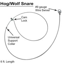 hog wolf snares dozen wildlife control supplies product code wcsbnws [ 1000 x 1000 Pixel ]