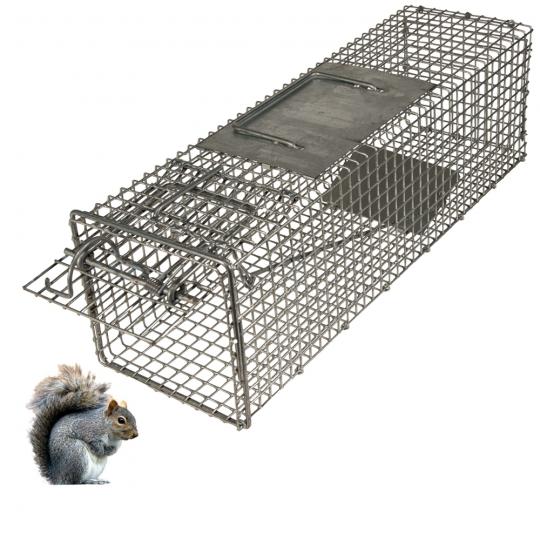 wcs special squirrel trap