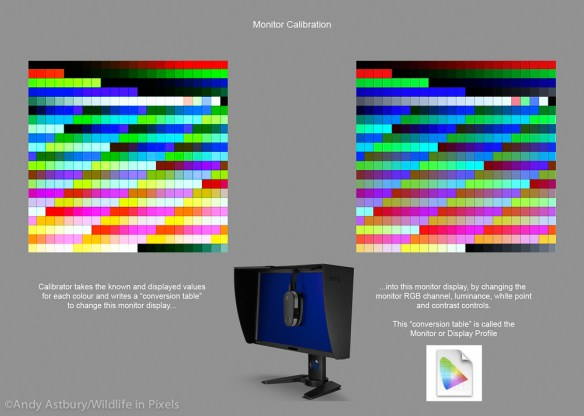 moncal3 600x427 Monitor Calibration with ColorMunki