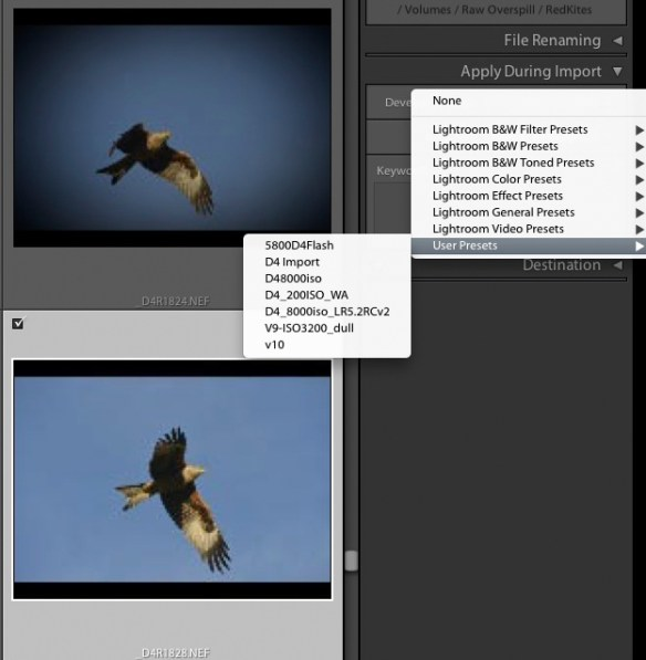 6 Accurate Camera Colour within Lightroom