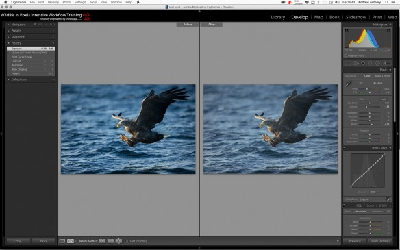Step 5 600x375 Lightroom   Neutralise Hidden Exposure Compensation