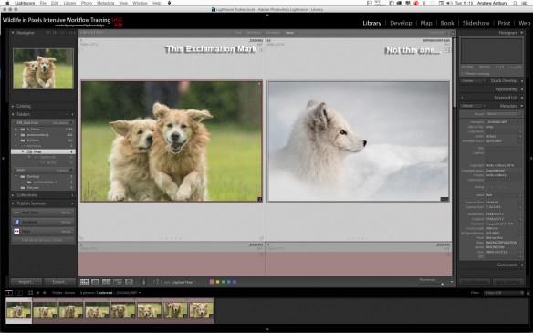Screen Shot 2016 07 12 at 11.15.50 Lightroom Folders Panel