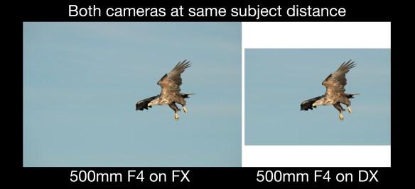 FXvDX 900x411 FX vs DX