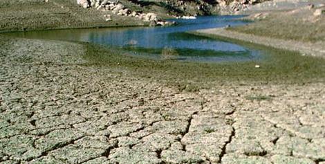 https://i0.wp.com/www.wildlifemanagementpro.com/wp-content/uploads/2009/04/drought-impact-on-texas-wildlife-01.jpg?w=750