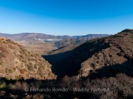 Douro Internacional Nature Park