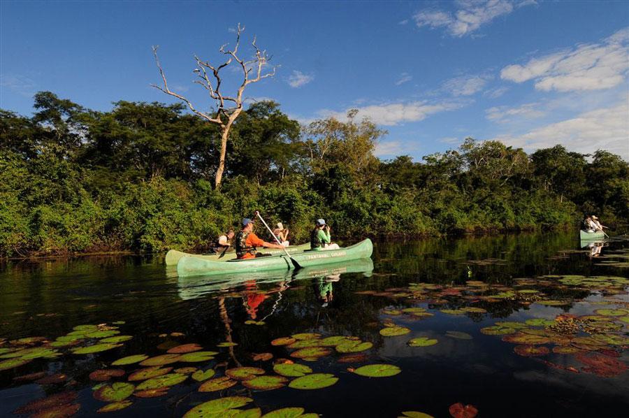 Pousada Araras Eco Lodge holiday accommodation in Brazil Latin America  Wildlife Worldwide