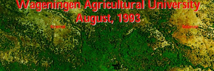 Vegetation Analysis of a Buffalo's Neck, 1993 Assen
